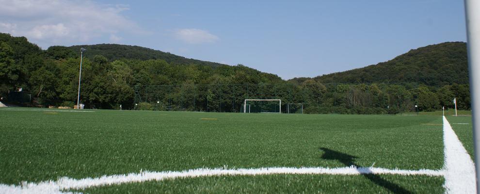 Fussballhauptfeld
